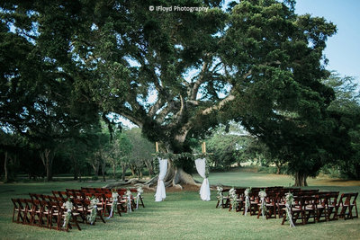 Dillingham-Ranch-waialua-destination-wedding-oahu-hawaii-honolulu-arluis-weddings-venue 2