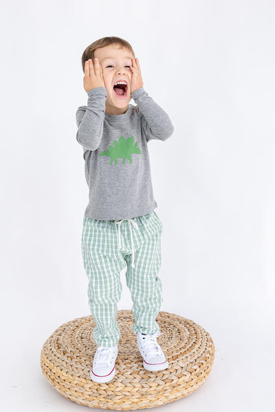 A little boy wearing a shirt with a dinosaur and green plaid pants