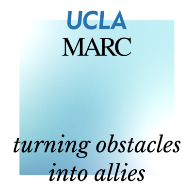 self paced course turning obstacles into allies