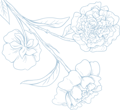 misspng-floral-design-black-and-white-fresh-flowers-vector-image-5a8c29b30603c7.9414616815191351550247