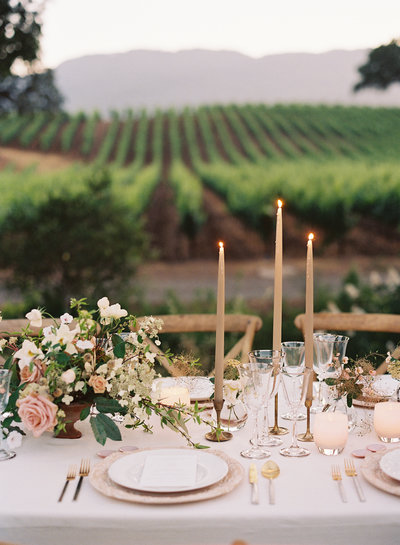 Social event and dinner party by Jenny Schneider Events in Napa Valley, California. Photo by Eric Kelley Photography.