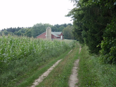 Barn from the lane 2