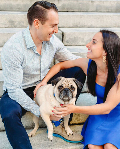 Pug-in-engagement-picture