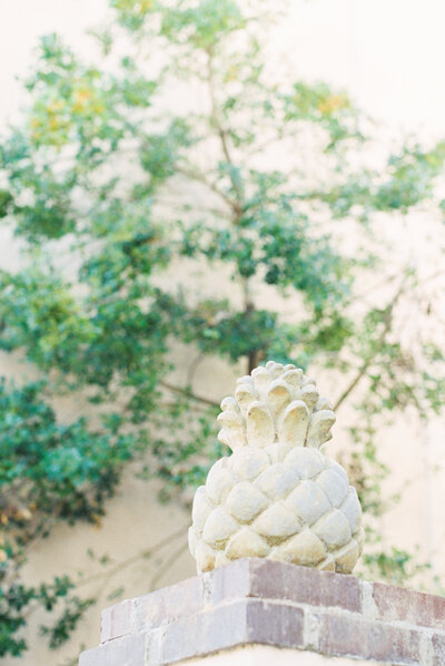 Anna-Kay-Photography-Charleston-25