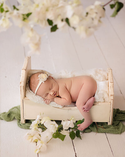 Professional studio portrait of newborn baby asleep in prop bed styled with flowers