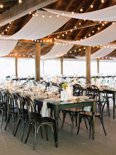 Elegant Vineyard Wedding