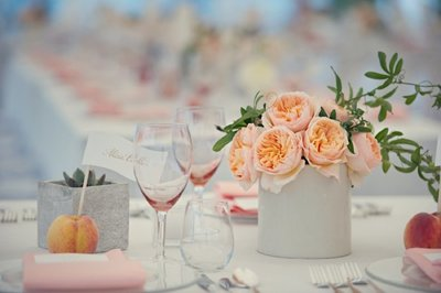 Peach inspired wedding at The Florence Griswold Museum