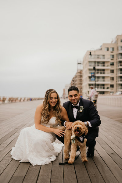 Pawfect for You Pet Care during wedding New York Massachusetts Connecticut New Jersey Pennsylvania20