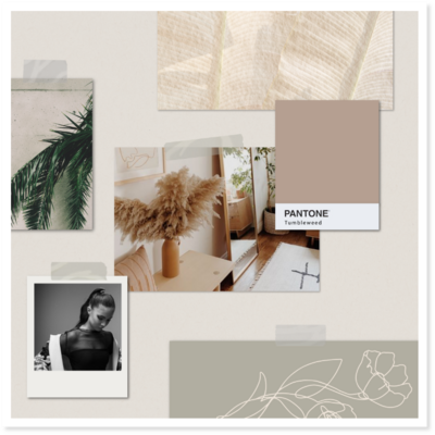 A mood board depicting a brand direction.