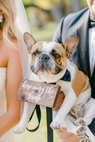 Leidy and Josh Photography | Brown Wedding - LJ Favs-49