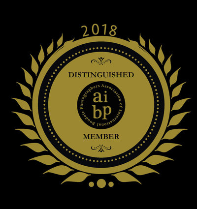 AIBPMemberBadge2018GOLD