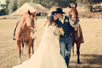 Country wedding, bride and groom with horses