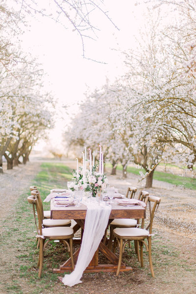 Romantic Orchard Elopement-77