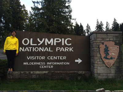 Olympic National Forest Washington