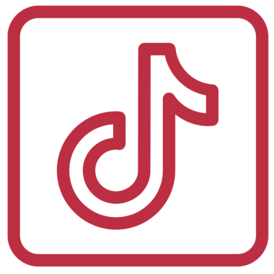 lisa btag tiktok icon