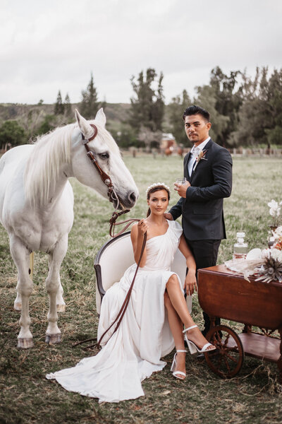 bride-holds-white-horse-behind-her-while-seated-drinking-whiskey-in-hawaii