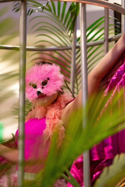 lady in bird costume in a cage proving entertainment at a gala in savannah