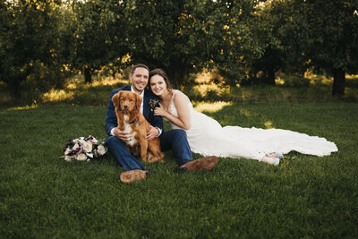 bride and groom with dog sitting on the grass