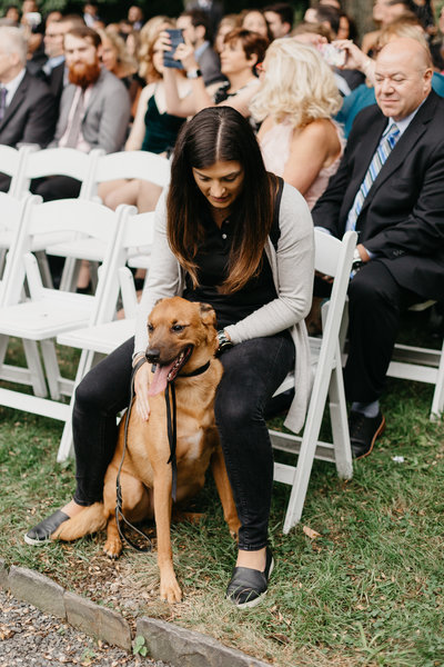 Pawfect for You Pet Care during wedding New York Massachusetts Connecticut New Jersey Pennsylvania21