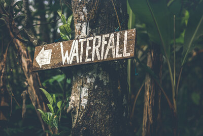 brown-wooden-waterfall-direction-sign-placed-on-brown-tree-952895
