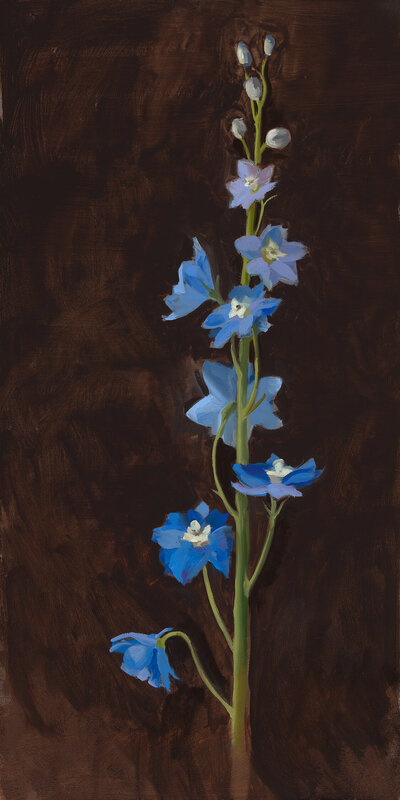 Clair gallery paintings_Blue Delphinium_
