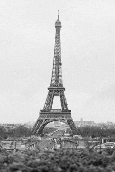 Black and white portrait of Eiffel Tower