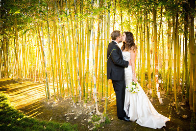 Incredible bamboo wedding photo at Japanese Friendship Garden in Balboa Park, San Diego.