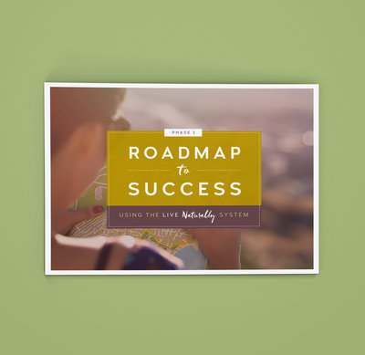Roadmap2Success
