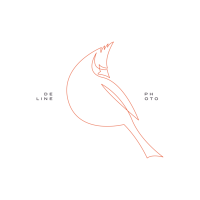 Cat Deline Photography Bird Logo