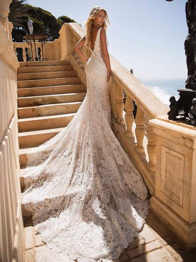 Moonlight Wedding Dress  4