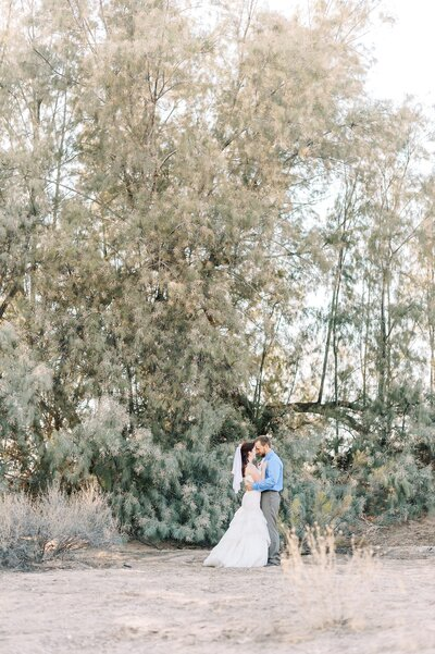 Phoenix Arizona Desert Wedding Photographer