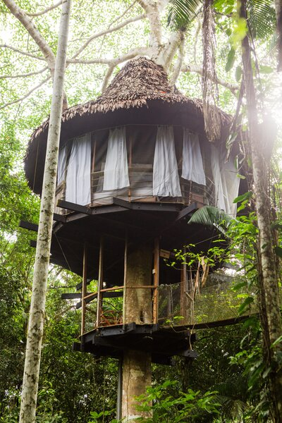 treehouse-lodge-peru-amazon-rainforest-jungle-iquitos-1