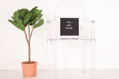 plant and sign on modern clear chair