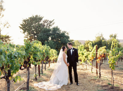 Kelsey + Alex Sonoma Buena Vista Winery Wedding - Cassie Valente Photography 0179