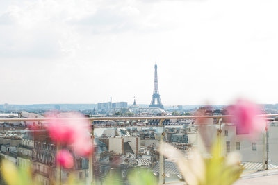 ParisViewfromPrintemps