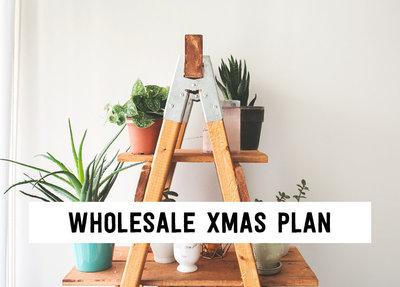 Wholesale Xmas plan