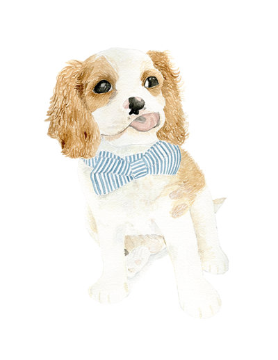 watercolor-pet-portrait-Bingley-The-Welcoming-District