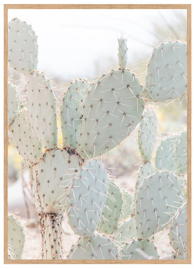 Cactus-Makes-Perfect-Framed