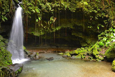 Dominica Emerald Pool
