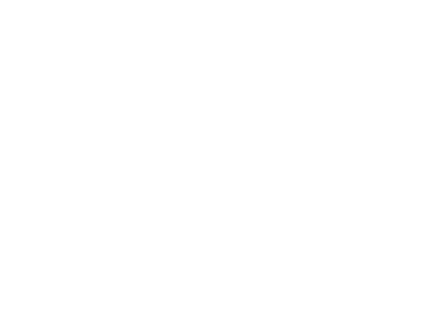 Boudie City Watermark-01