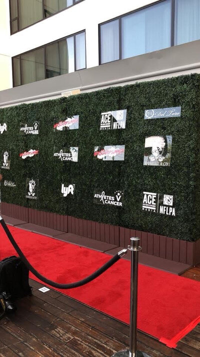 Red Carpet Event in Los Angeles
