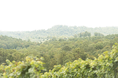 ©ErikaGracePhoto_Point Look out vineyards_asheville north carolina wedding-7