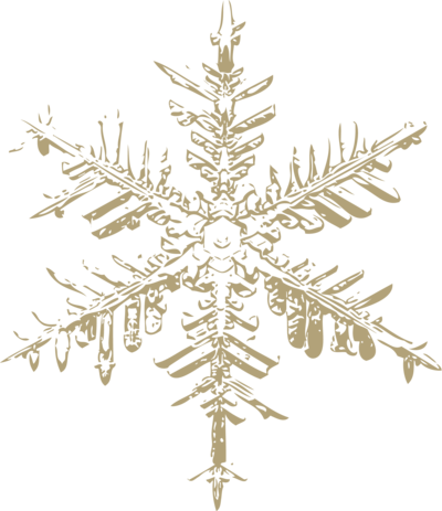 old gold snowflake 2