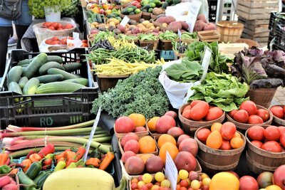 fresh-picked-vegetables-at-the-local-farmers-market-nominated_t20_ZVZ6Ng