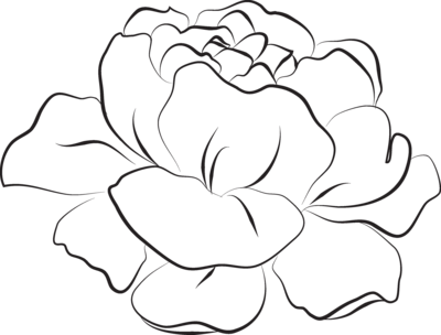 Flower 1 PNG