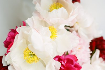 Scenic Place Peonies-1
