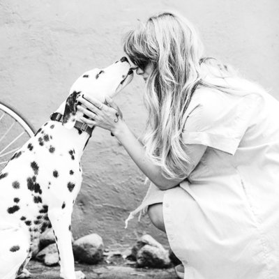 adult-black-and-white-dalmatian-licking-face-of-woman-1389994