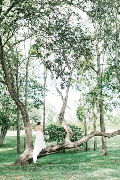 Renee_Dan_Marblegate_Farm_Wedding_Abigail_malone_Photography-254