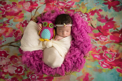 Picture of newborn in purple