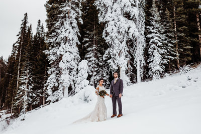 telluride_wedding_at_peaks_resort_and_spa_-_randy_and_ashley_studios-110